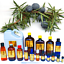 3ml-Essential-Oils-Many-Different-Oils-To-Choose-From-Buy-3-Get-1-Free thumbnail 55