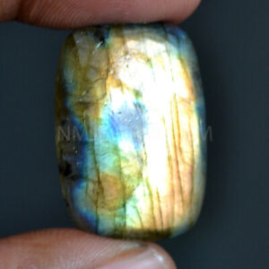Cts. 37.55 Natural Labradorite Blue Fire Cabochon Cushion Cab Loose Gemstone