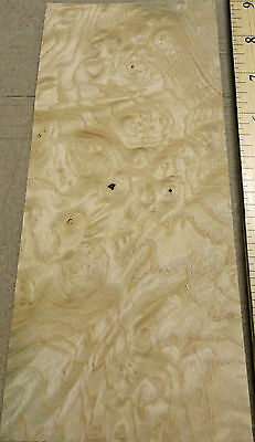 "White Ash Burl wood veneer sample 7/"" x 7/"" raw no backer 1//42/"" thickness A grade"