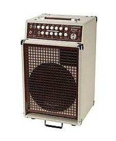 SWR California Blonde 120 watt Guitar Amp