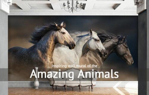 Details about  /3D Beautiful Aurora ZHU2085 Door Wall Mural Photo Wall Sticker Decal Wall AMY show original title