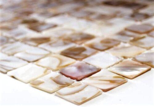 Coquillage Nacre Mosaïque Mosaïque Beige Cuisine Carrelage Miroir Mur wb150-sm2031 de coffre