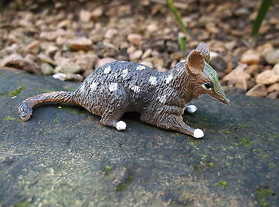 QUOLL New figurine model Science and Nature Small plastic Australian Animal