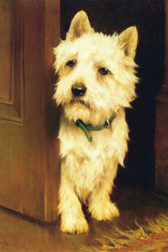 West White Highland Terrier Dog by Arthur Wardle  New LARGE Blank Note Cards