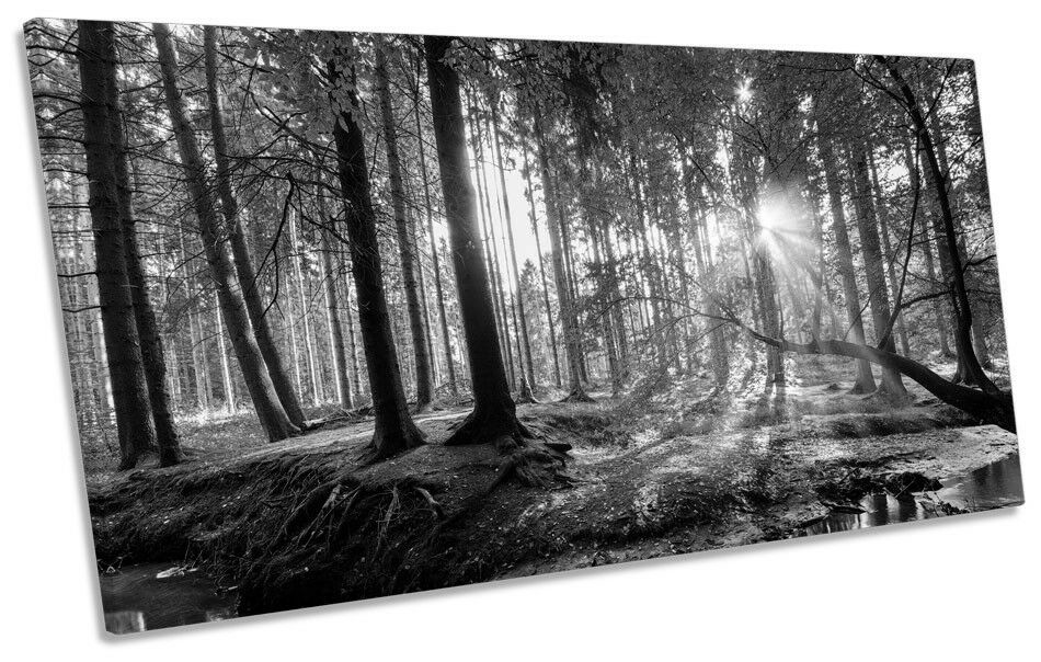 Landscape Forest Trees B&W Bild PANORAMIC CANVAS Wand Kunst Drucken