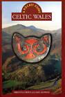 Celtic Wales by Ray Howell, Miranda J. Green (Hardback, 2000)