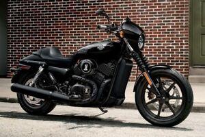 Details zu Harley-Davidson Street XG500 / XG750 Service Electrical on