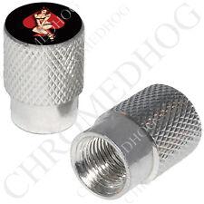 2 Silver Billet Aluminum - Tire Air Valve Stem Cap for Motorcycle - Pin Up Spade