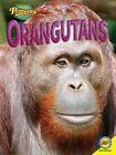 Orangutans by Deb Marshall (Paperback / softback, 2015)