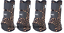 Classic Equine LEGACY 2 SYSTEM Cheetah Front Hind Rear Value Pack M Leg Boots