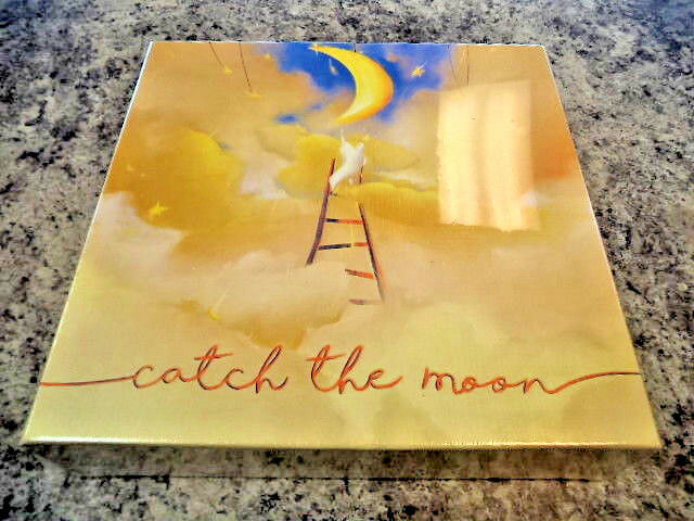 Catch the Moon - Bombyx Games Board Game New