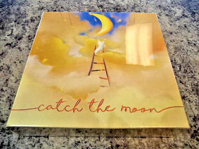 Catch  the Moon - Bombyx giocos tavola gioco nuovo   centro commerciale di moda