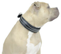 Designer Bully Padded Bully Dog Collar Crafted From Wickett & Craig Usa Leather