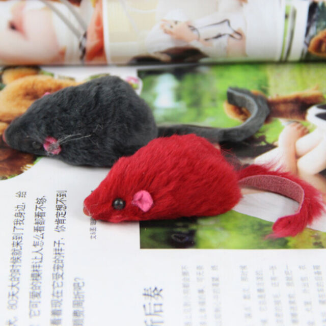 Soft Fleece False Mouse Cat Toys Funny Playing Toys For Cats Kitten X1 FEVR、New