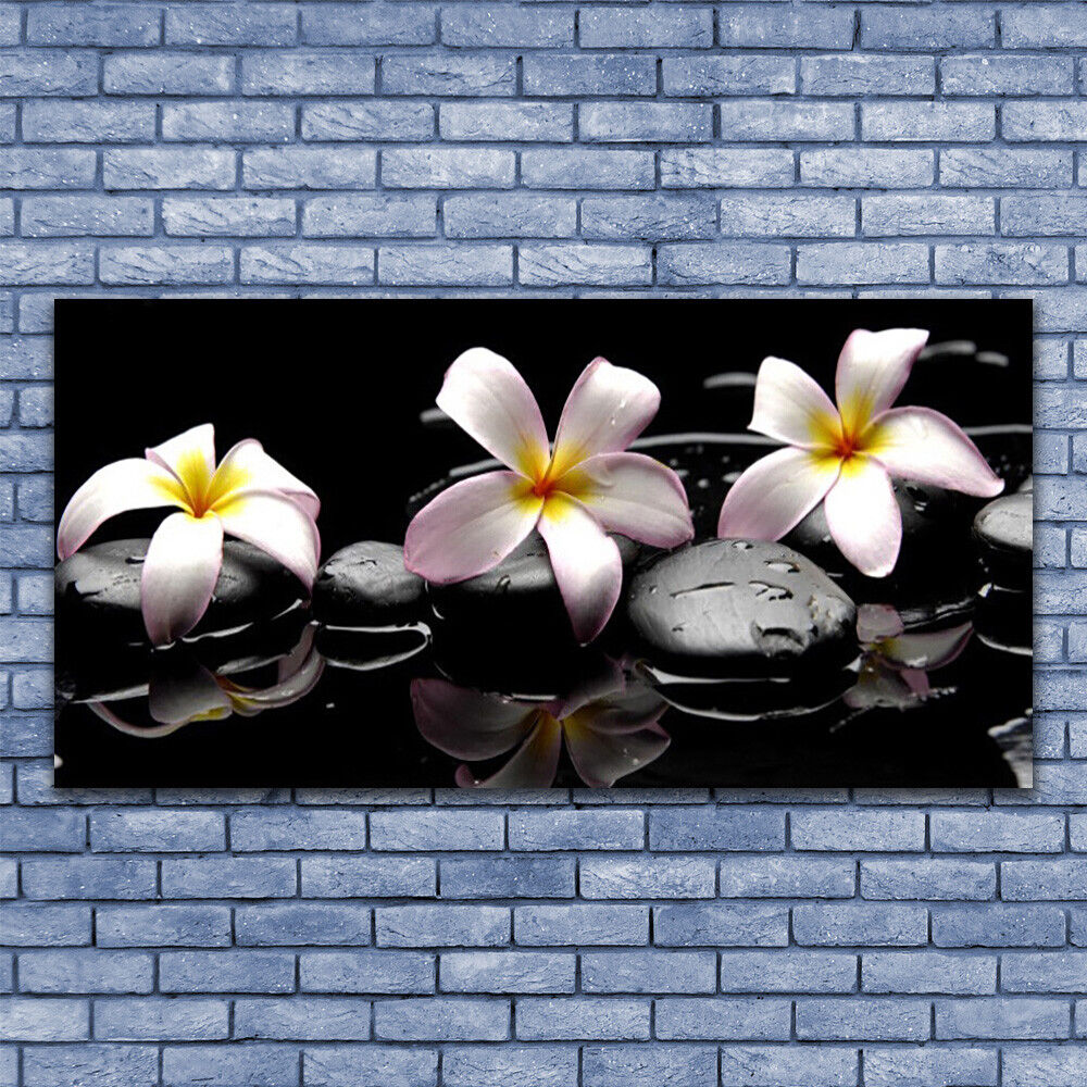 Print on Glass Wall Wall Wall art 140x70 Picture Image Flower Stones Floral c1c803