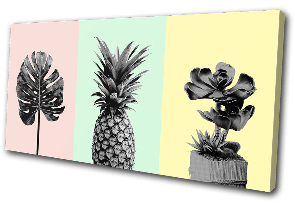 Botanical Fruit Modern Floral SINGLE Leinwand Wand Kunst Bild drucken