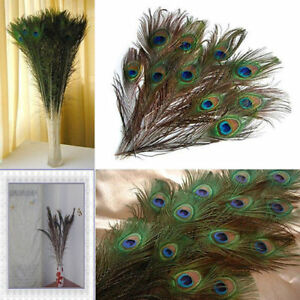 """10Pcs Peacock Blue 2-3/"""" Natural Plumage Feathers Trimmings Craft Party Decor DEr"""