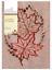 Anita-Goodesign-Machine-Embroidery-Quilting-Patterns-Autumn-Cutwork thumbnail 1