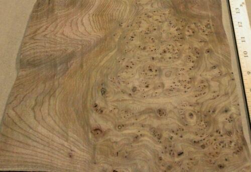 "Carpathian Elm Burl wood veneer 12/"" x 26/"" raw no backing 1//42/"" thickness AA"