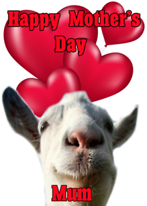 Funny goat nmd133 fun cute mothers day card a5 personalised image is loading funny goat nmd133 fun cute mother 039 s m4hsunfo