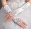 Brauthandschuhe-fingerlos-Braut-Handschuhe-Strass-Perlen-Hochzeit-Elfenbein-Weiss Indexbild 10