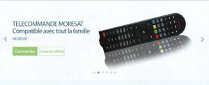 Telecommande-pour-recepteur-EUROVIEW-DIGICLASS-ECHOSONIC-MORESAT