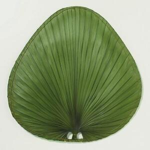 Green Palm Fan Blades - Set of 5 | eBay