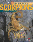 Scorpions: Armored Stingers by Sandra Markle (Hardback, 2011)