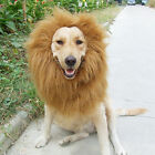 New Cute Pet Costume Lion Mane Wig for Dog Cat Halloween Clothes Fancy Dress up