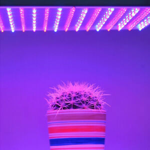 240w 225 Led Grow Light Panel Lamp Full Spectrum