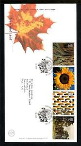 GB-2000-MILLENNIUM-PROJECTS-TREE-AND-LEAF-FDC-ST-AUSTELL-CANCEL