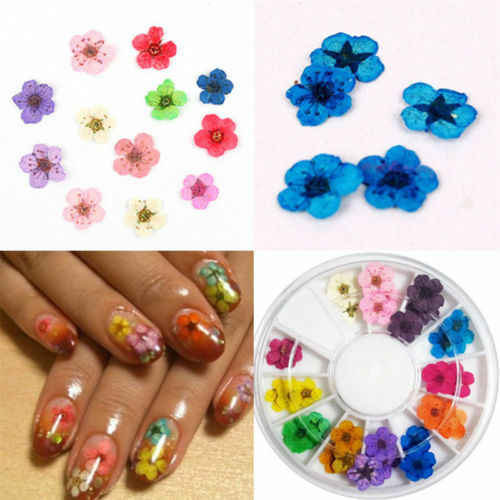 12 Colors Fashion Wheel Dried Dry Flower Nail Art Decor For Uv Gel