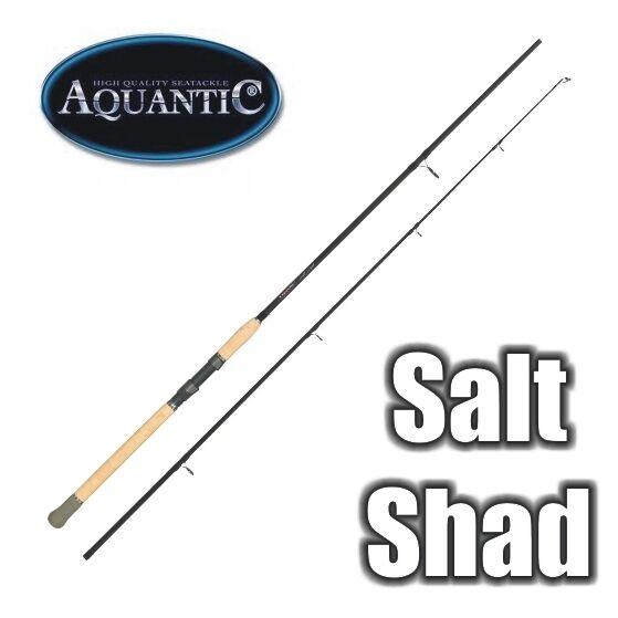 Cantanti aquantic Salt SHAD Lite 2,70 M WG  40120 grammi Top Baltico stadia