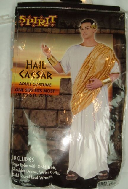Mens Adult Roman Royal Hail Caesar White /& Gold Toga Robe Costume Outfit