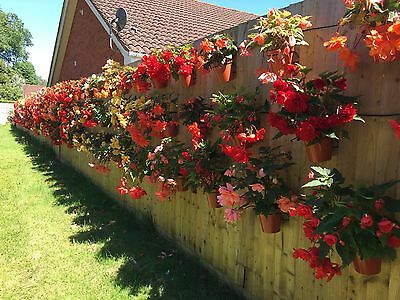 6 Plant Pot Holders Hangers To Hang 6 Quot Flower Pots On A