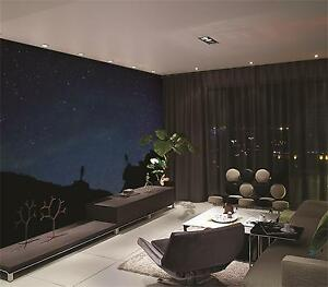 3D Night Beautiful Sky 886 Wall Paper Wall Print Decal Wall AJ WALLPAPER CA