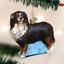 OLD WORLD CHRISTMAS BERNESE MOUNTAIN DOG CHRISTMAS ORNAMENT 12379