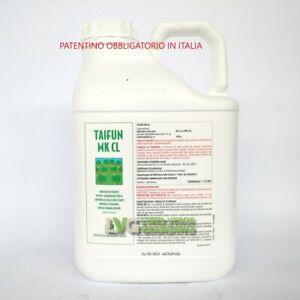 TAIFUN-MK-CL-Erbicida-Diserbante-Totale-Glifosate-Roundup-5-L