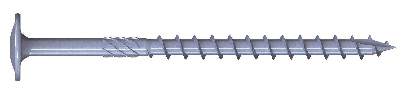 REISSER TKS Tellerkopfschrauben Doppelganggewinde TX TG Stahl zn-blau + Wera Bit