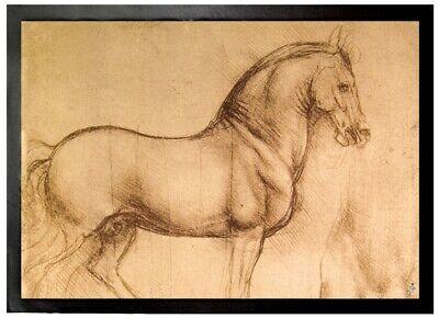 70x50cm Leonardo Da Vinci #96617 Pferdestudie Skizze Fußmatte Türmatte