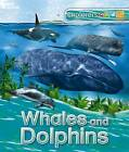 Explorers: Whales and Dolphins by Anita Ganeri (Paperback, 2016)