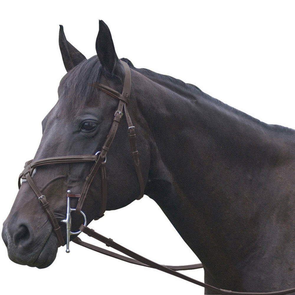 NEW Exselle Elite Plain Raised Jumper Bridle - Dark Havana, Cob