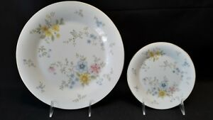 Royal-Doulton-Bone-China-Elegy-H5044-1-Bread-amp-Butter-amp-1-Dinner-Plate