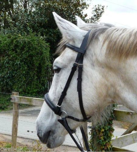 Leather Cross Over  Bitless Bridles with Reins Brown English Horse Gift Bridle  shop clearance