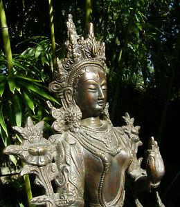 Traumhafte-sehr-feine-034-WEIssE-TARA-034-Statue-aus-Nepal-5-5-Kg-ALT
