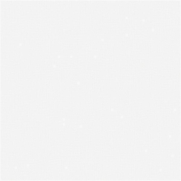 G56267 - Anthologie Plain White Galerie Wallpaper