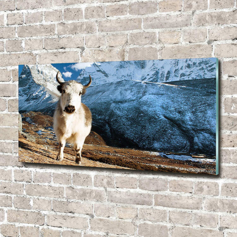 Wandbild aus Plexiglas® Druck auf Acryl 140x70 Tiere Yak Berge
