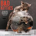 Bad Kitties Calendar 2017 Willow Creek Press 9781682340172