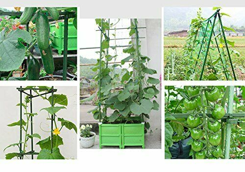 Sturdy Steel Garden Stakes 4Ft Plastic Coated Plant Stakes 10Pack Climbing Plant