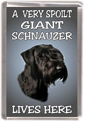 "Giant Schnauzer Dog Fridge Magnet /""THE MORE I LOVE MY DOG/"" No 2 by Starprint"
